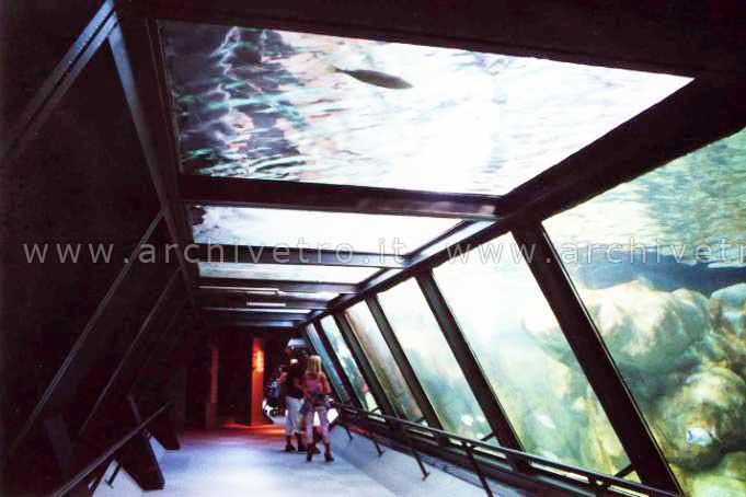 Vetri per piscine: tunnel in vetro subacqueo